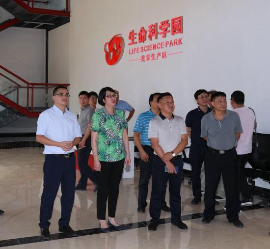 文东旭在桂林平乐县生命科学园开展专题调研
