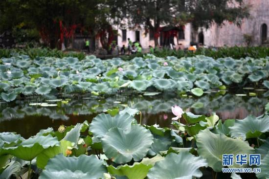 (美丽中国)(4)安徽呈坎古村风光好
