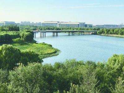 逐步形成绿荫磨刀网磨刀石ycgll覆盖的绿色生态林荫大道