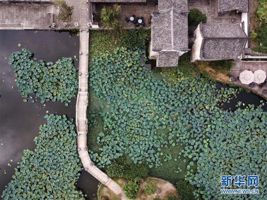 (美丽中国)(2)安徽呈坎古村风光好