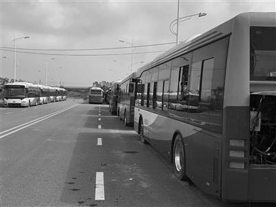 镇江丹徒20辆新能源公交车被闲置在断头路 无人认领