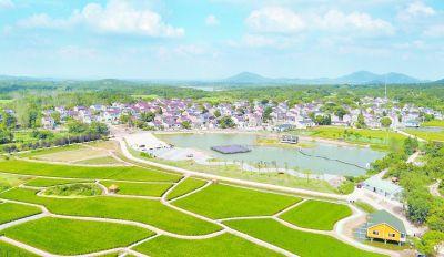 空中俯瞰南京溧水芝山村:低效农田变良田
