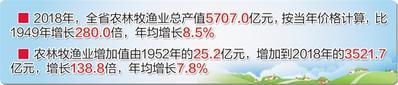 河北:农业稳定增长 农民持续增收