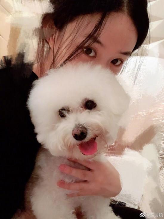 赵丽颖产后首晒自拍照怀抱爱犬素颜出镜状态好