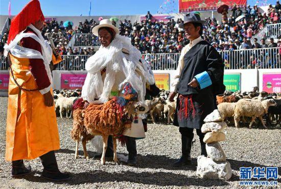 """(文化)(5)西藏""""數羊頭""""傳統活動"""
