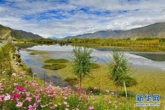 (美麗中國)(6)拉薩:金色池塘秋色美