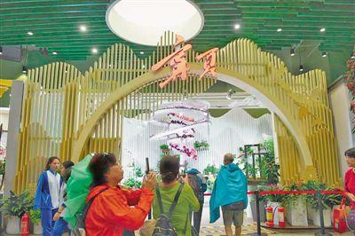 寧夏展品在北京世園會獲5項金獎