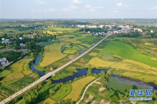 """(社会)(1)河南信阳:""""多彩田园""""铺就绿色发展之路"""