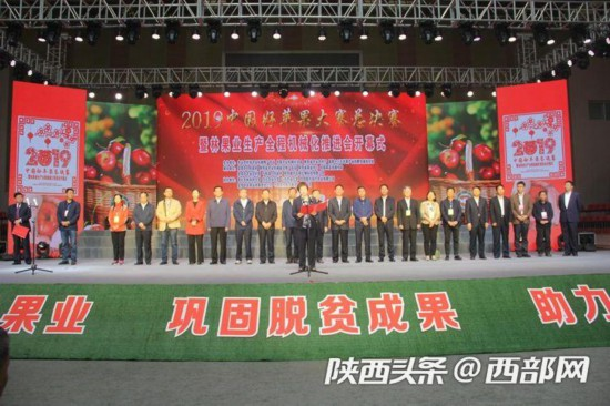 2019中国好苹果大赛陕西千阳收获2金4银7铜大奖