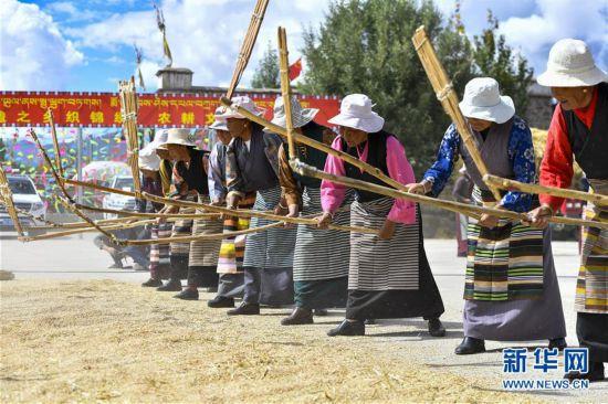 """西藏欢庆""""丰收节"""""""
