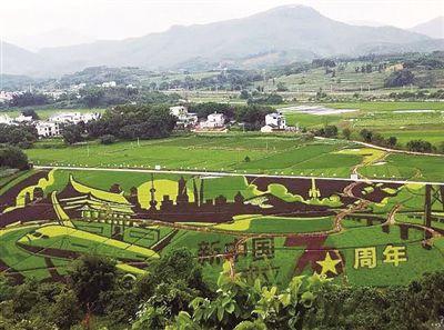 鹿寨縣農業農村發展歷史性成就回顧