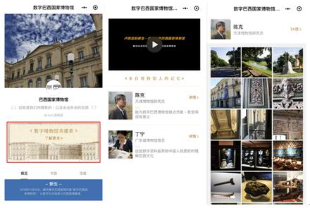 """数字巴西国家博物馆上线 700件数字展品线上""""开展"""""""