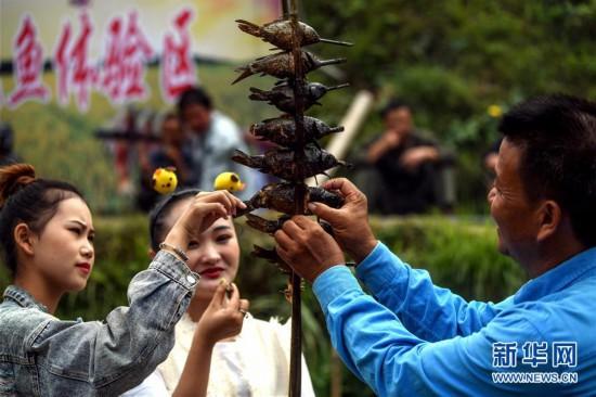 (社会)(5)苗乡欢庆丰收节
