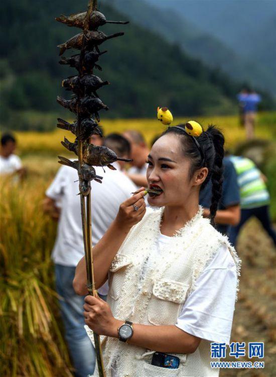 (社会)(4)苗乡欢庆丰收节