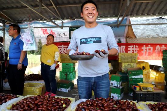 【乡味宁夏】又到了吃枣的季节 灵武长枣你吃了吗