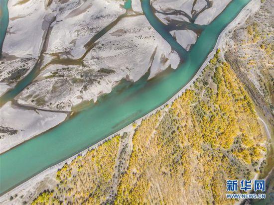 (美丽中国)(1)拉萨河谷秋意浓