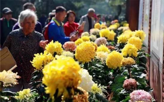 国庆假期近320万人游北京市属公园部分活动节后将持续