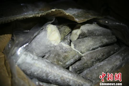 南宁海关联合警方合作摧毁一涉恶走私犯罪团伙 案值约4亿元