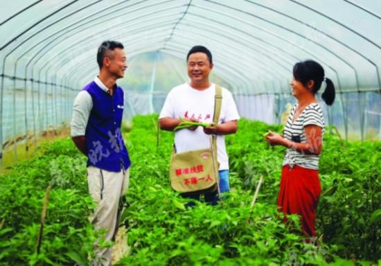 """7千亩大坝蔬菜成脱贫致富""""助推"""