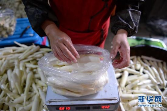 (经济)(3)安徽岳西:高山茭白富农家