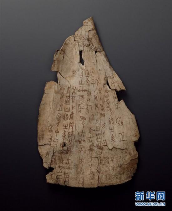 (文化)(1)國博將首次大規模展示館藏甲骨