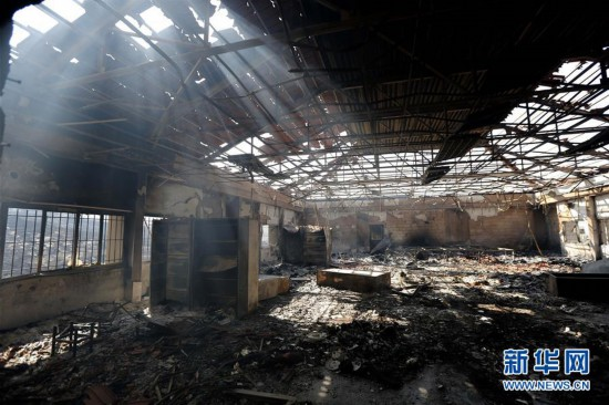 (国际)(1)黎巴嫩:山林大火过后
