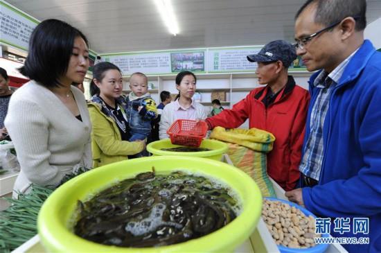 (社会)(1)江西新干:组织扶贫日主题活动