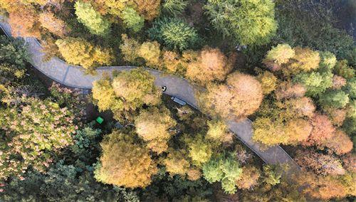 航拍徐州雲龍湖秋色 風光秀美景色如畫