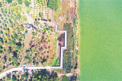 徐州黃河故道變身濕地公園 景觀質量大幅提升