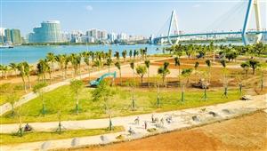 还海还岸还景于民――蝶变海口湾 美丽一座城