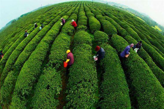 http://www.carsdodo.com/cheshangchezhan/212069.html