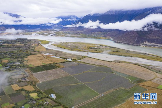 川藏联手推动西藏苹果标准化种植