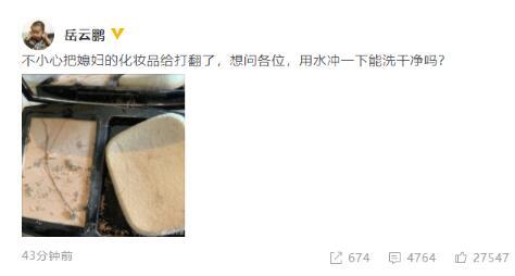 岳云鹏打翻媳妇粉底在线求助 网友:双十一快到了