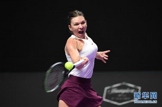 (体育)(9)网球――WTA年终总决赛:斯维托丽娜胜哈勒普