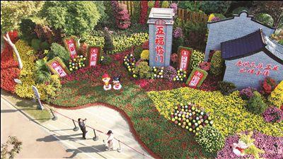 澳门金沙网上娱乐港闸举办菊花展 总品种达200多种