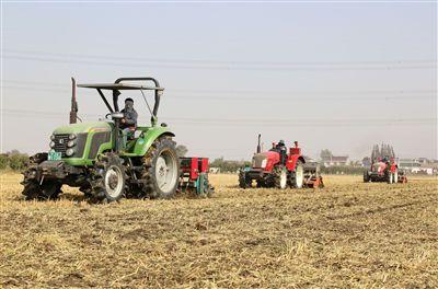 海安农民抓农时忙秋种 田间地头现忙碌景象