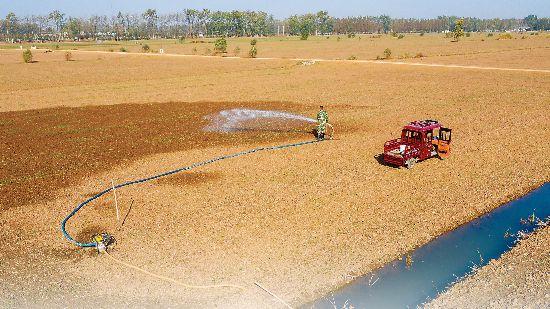 安徽省累计抗旱浇灌2500万亩次
