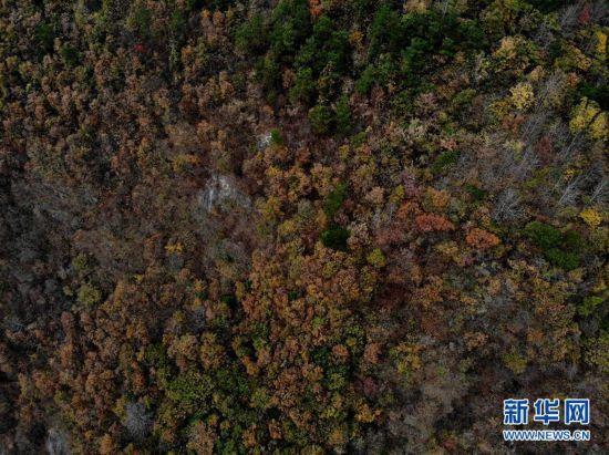 (环境)(2)安徽潜山:俯瞰大别山区