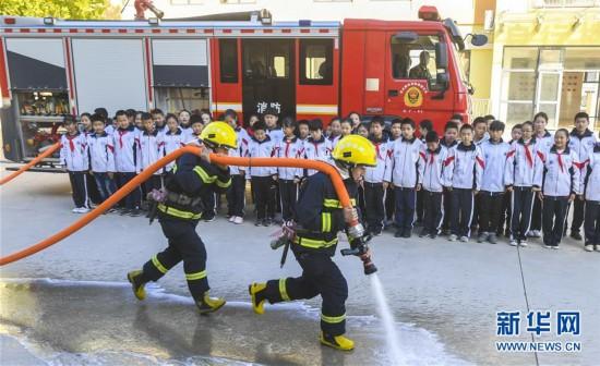 (教育)(2)消防安全进校园