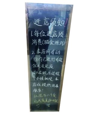 南京宠物咖啡店越开越多监管处于空白地带