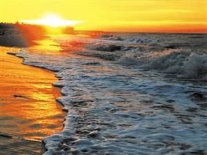 """一日畅游海口 邂逅美丽浪漫近几年来,海口以城市更新""""五化""""先行为抓手,大力开展生态文明建设,一幅幅生态美景遍布海口的各个角落。绿色崛起中的海口,还绿于民,还景于民,不断提高市民游客的获得感、幸福感。【详细】"""