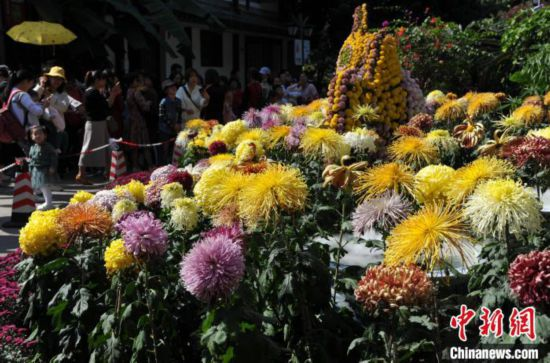 福州西湖菊展吸引游人