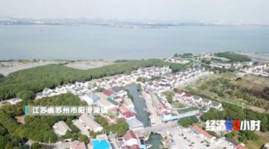 蘇州陽澄湖水質污染危及螃蟹生意 大閘蟹來自何處?