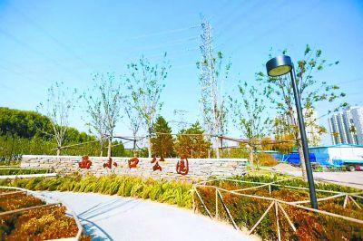海淀最大违建群变生态公园 将于明年春天正式开园迎客