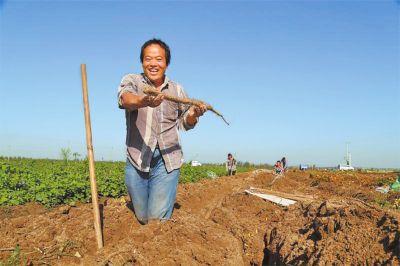 http://www.wzxmy.com/wuzhijingji/12898.html