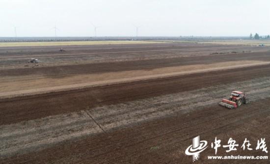 農田造墒種麥忙