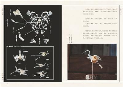 杭州人吃的鲞 头骨可以拼成一只仙鹤