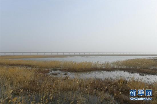 (环境)(1)长桥飞架构筑绿色出疆南通道