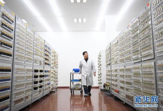 (服务)(1)智能化生产助力品牌壮大