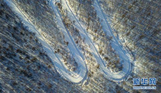 (环境)(1)阿尔山雪域树影